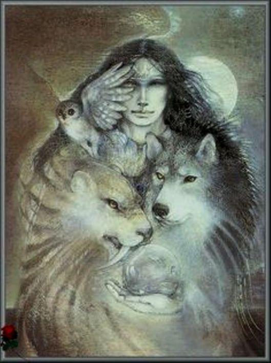 Wolf Owl Mountain Lion Shawomen